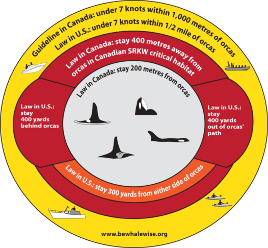 100 metres/yards no approach zone for all other marine mammals in US and Canada; and keeping 200 metres away from whales, dolphins, or porpoises if they are resting or with their calf.